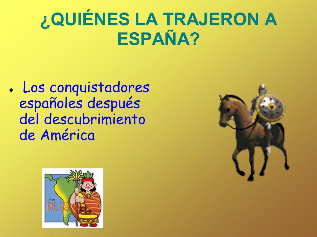 ¿QUIÉNES LA TRAJERON A ESPAÑA? Los conquistadores españoles después del descubrimiento de América