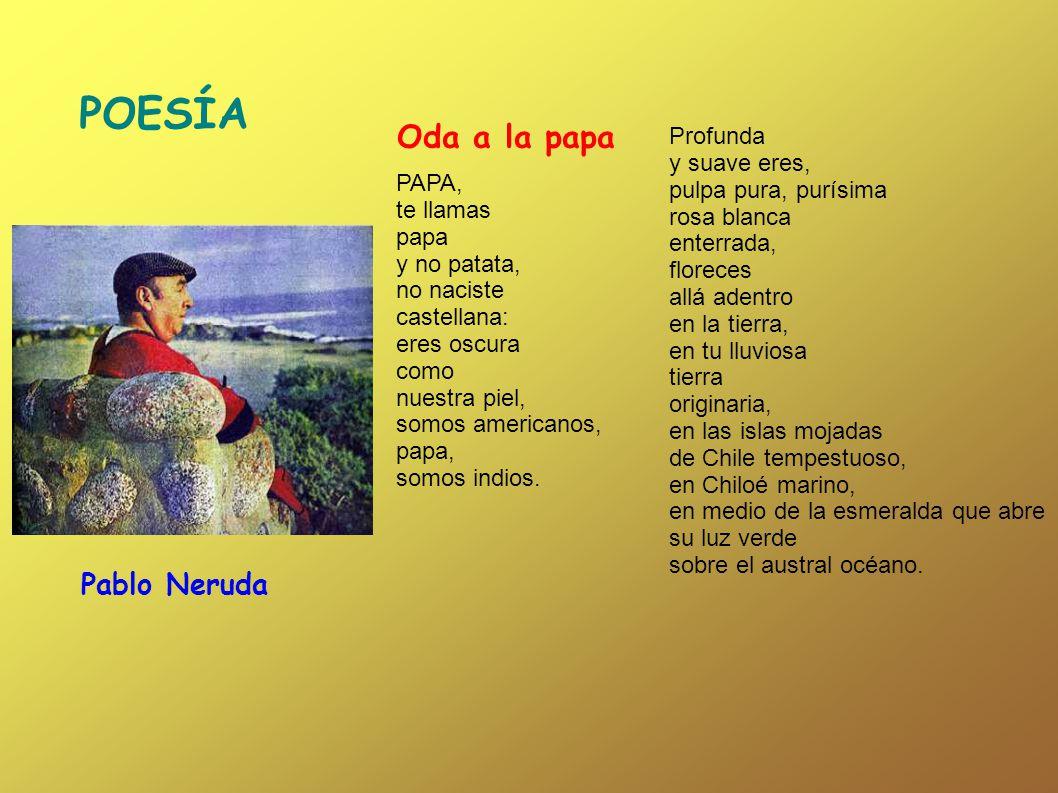 PAPA, te llamas papa y no patata, no naciste castellana: eres oscura como nuestra piel, somos americanos, papa, somos indios. Profunda y suave eres, p
