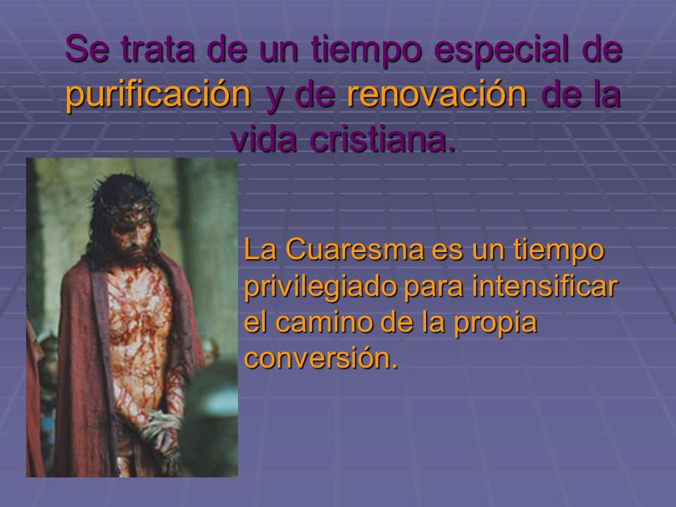 Se trata de un tiempo especial de purificación y de renovación de la vida cristiana. La Cuaresma es un tiempo privilegiado para intensificar el camino