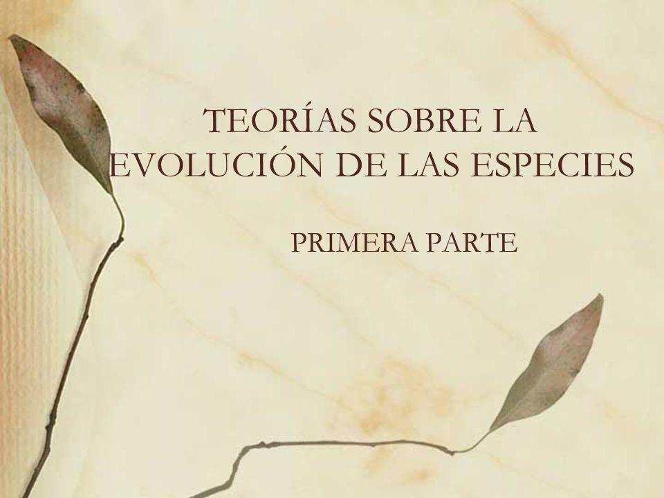 TEORÍAS SOBRE LA EVOLUCIÓN DE LAS ESPECIES PRIMERA PARTE
