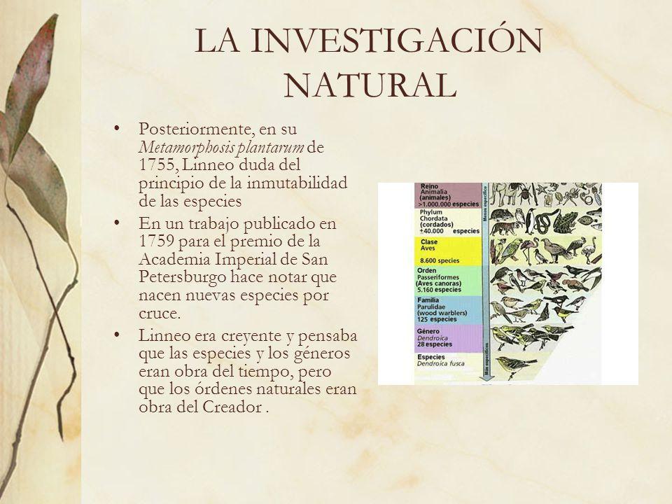 LA INVESTIGACIÓN NATURAL Posteriormente, en su Metamorphosis plantarum de 1755, Linneo duda del principio de la inmutabilidad de las especies En un tr