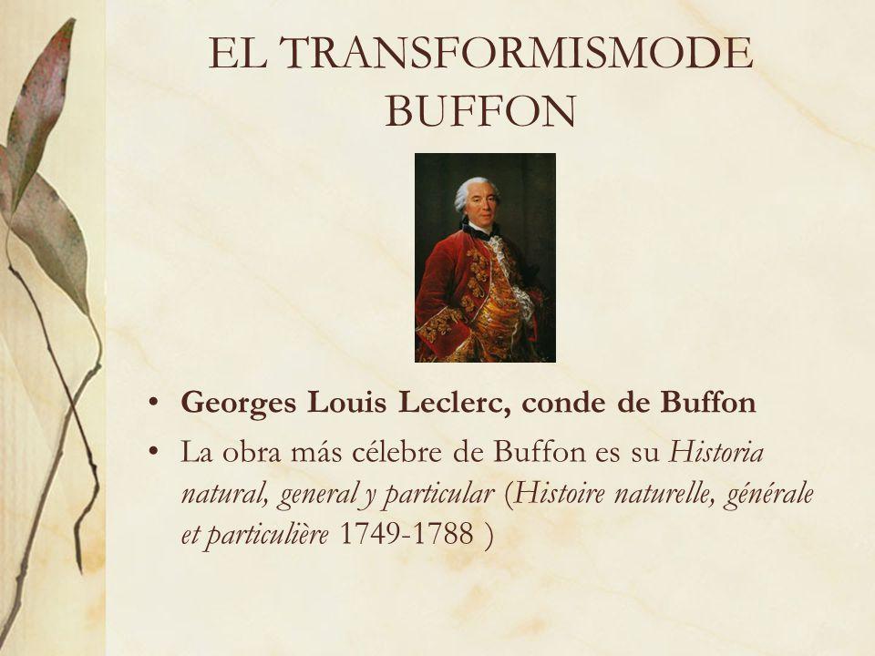 EL TRANSFORMISMODE BUFFON Georges Louis Leclerc, conde de Buffon La obra más célebre de Buffon es su Historia natural, general y particular (Histoire