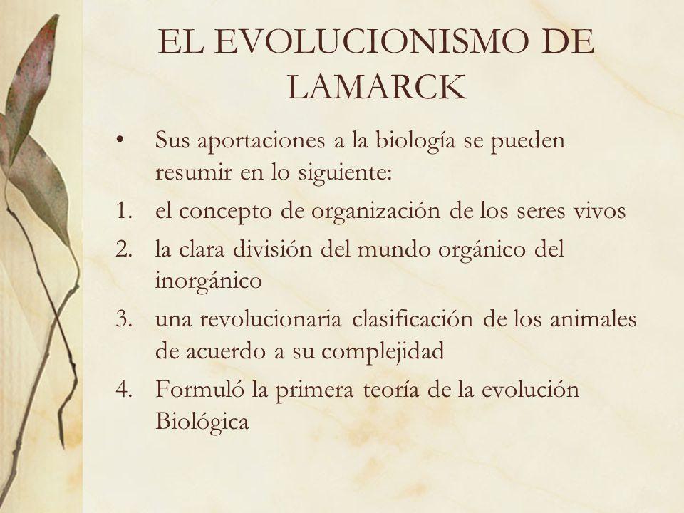 EL EVOLUCIONISMO DE LAMARCK Sus aportaciones a la biología se pueden resumir en lo siguiente: 1.el concepto de organización de los seres vivos 2.la cl