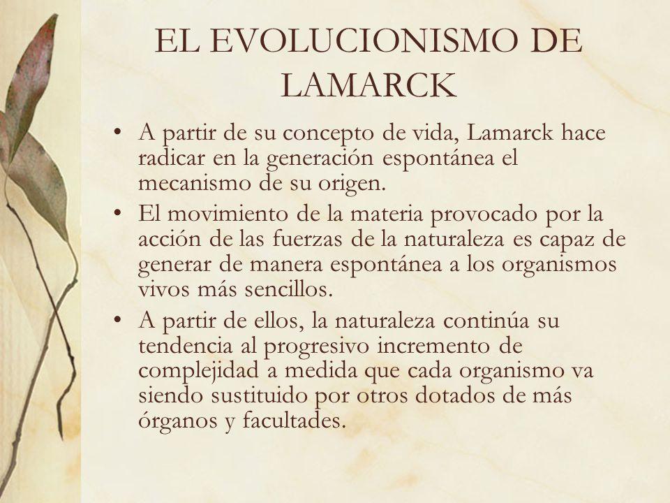 EL EVOLUCIONISMO DE LAMARCK A partir de su concepto de vida, Lamarck hace radicar en la generación espontánea el mecanismo de su origen. El movimiento