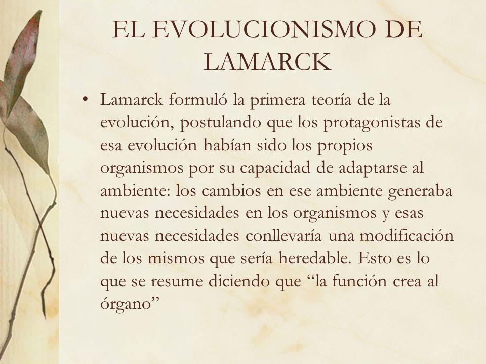 EL EVOLUCIONISMO DE LAMARCK Lamarck formuló la primera teoría de la evolución, postulando que los protagonistas de esa evolución habían sido los propi