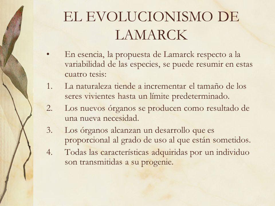 EL EVOLUCIONISMO DE LAMARCK En esencia, la propuesta de Lamarck respecto a la variabilidad de las especies, se puede resumir en estas cuatro tesis: 1.