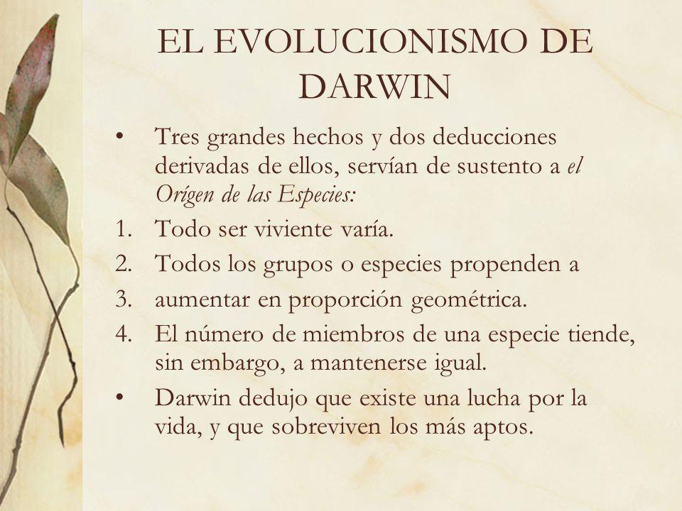 EL EVOLUCIONISMO DE DARWIN Tres grandes hechos y dos deducciones derivadas de ellos, servían de sustento a el Orígen de las Especies: 1.Todo ser vivie