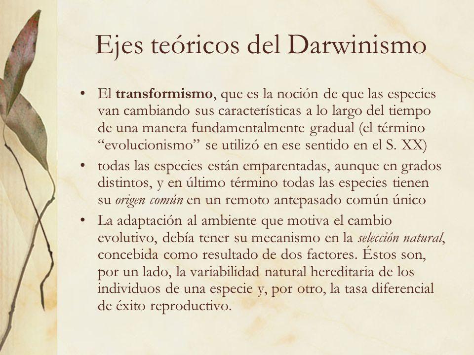 Ejes teóricos del Darwinismo El transformismo, que es la noción de que las especies van cambiando sus características a lo largo del tiempo de una man