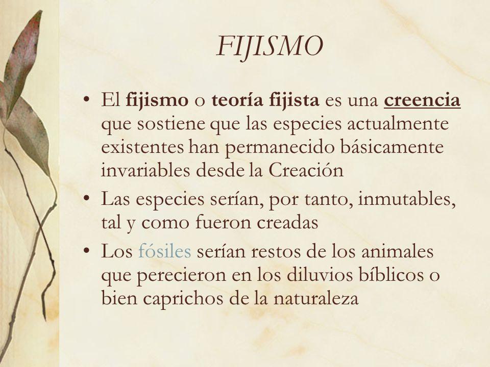 FIJISMO El fijismo o teoría fijista es una creencia que sostiene que las especies actualmente existentes han permanecido básicamente invariables desde