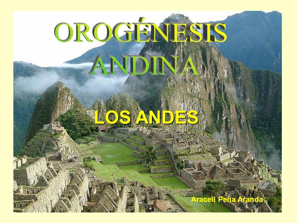 LOS ANDES Araceli Peña Aranda