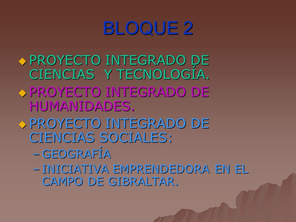 BLOQUE 2 PROYECTO INTEGRADO DE CIENCIAS Y TECNOLOGÍA.