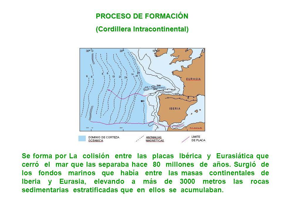 PROCESO DE FORMACIÓN (Cordillera Intracontinental) Se forma por La colisión entre las placas Ibérica y Eurasiática que cerró el mar que las separaba h