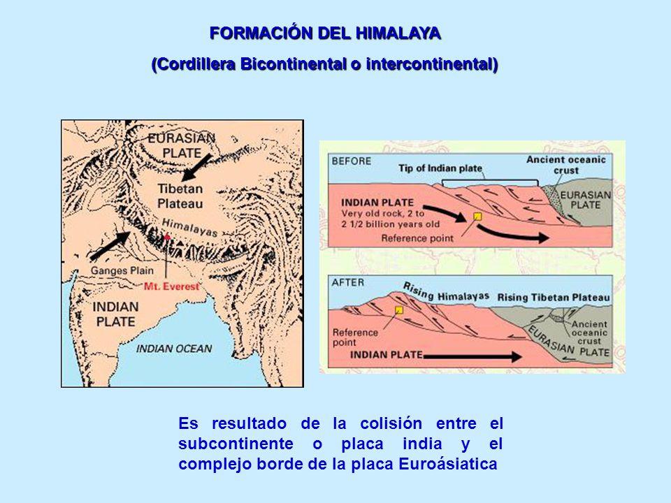 FORMACIÓN DEL HIMALAYA (Cordillera Bicontinental o intercontinental) Es resultado de la colisión entre el subcontinente o placa india y el complejo bo