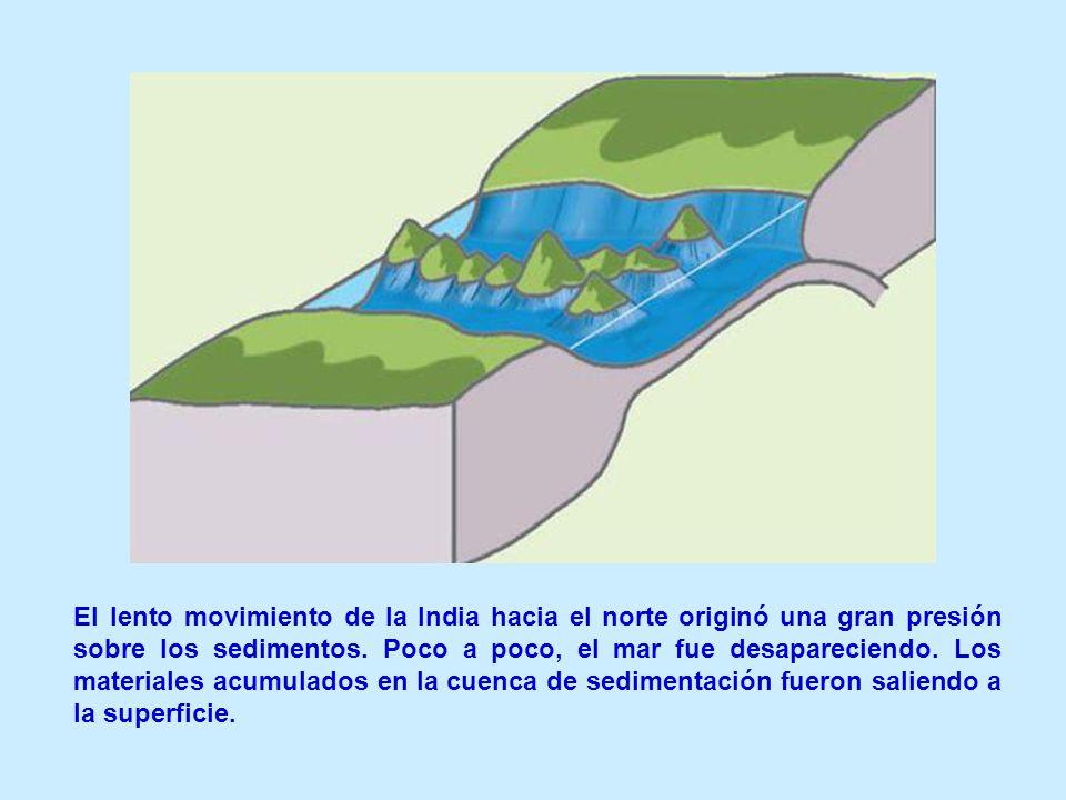 El lento movimiento de la India hacia el norte originó una gran presión sobre los sedimentos. Poco a poco, el mar fue desapareciendo. Los materiales a