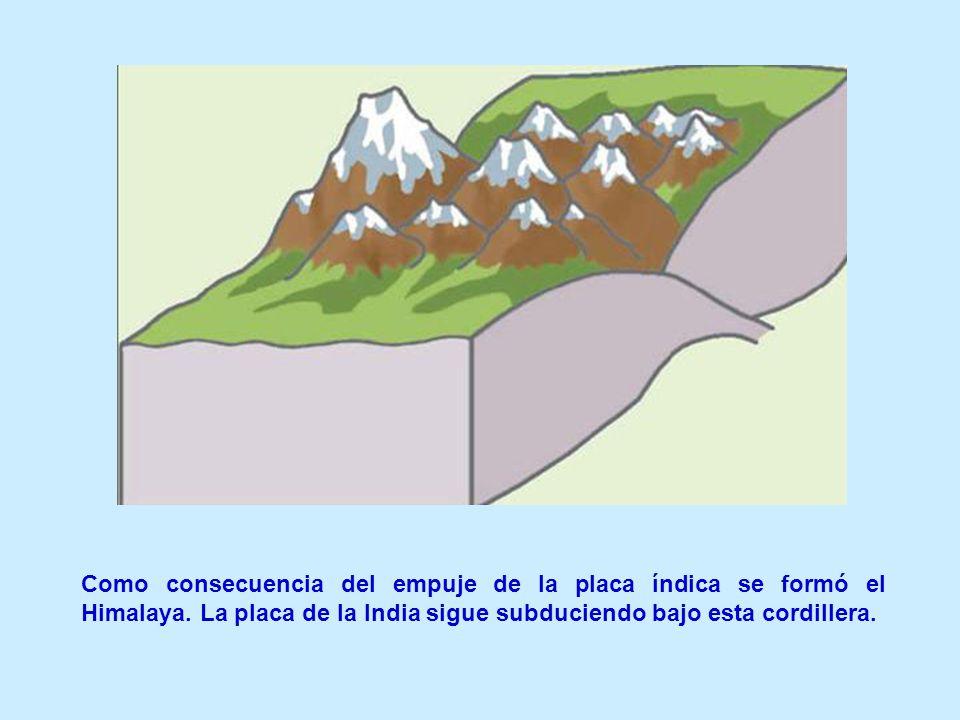 Como consecuencia del empuje de la placa índica se formó el Himalaya. La placa de la India sigue subduciendo bajo esta cordillera.