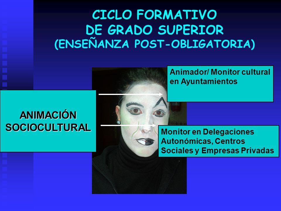 CICLO FORMATIVO DE GRADO SUPERIOR (ENSEÑANZA POST-OBLIGATORIA) ANIMACIÓN SOCIOCULTURAL Monitor en Delegaciones Autonómicas, Centros Sociales y Empresa