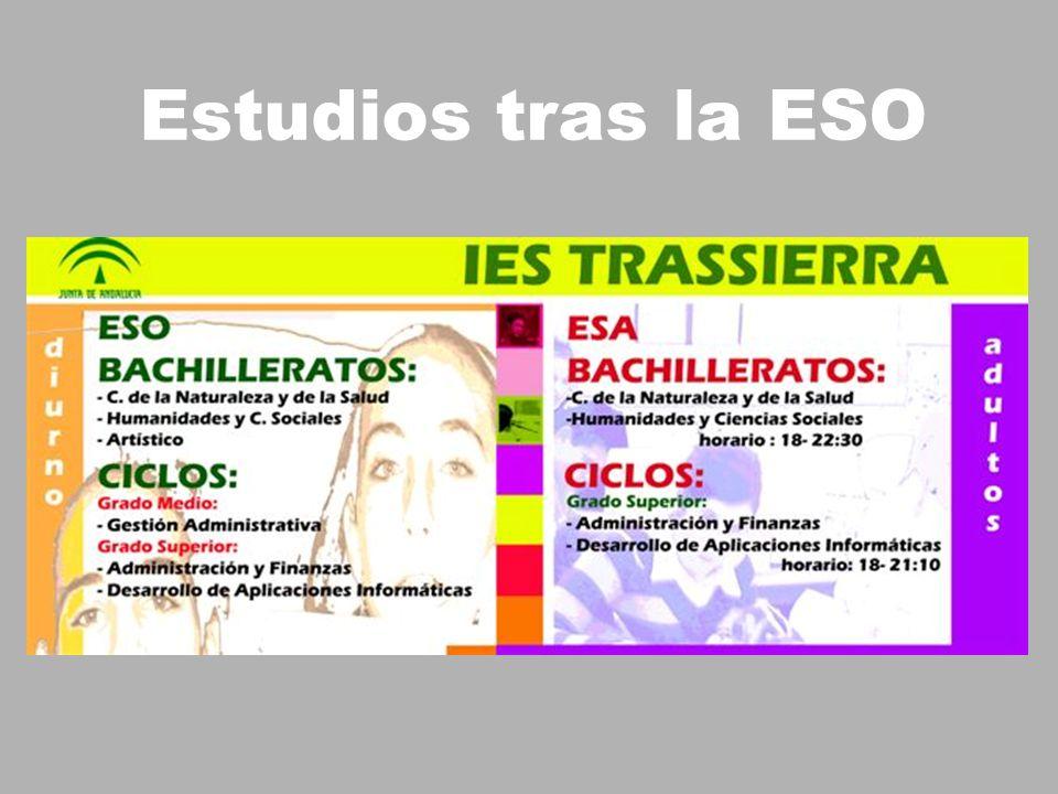 Estudios tras la ESO
