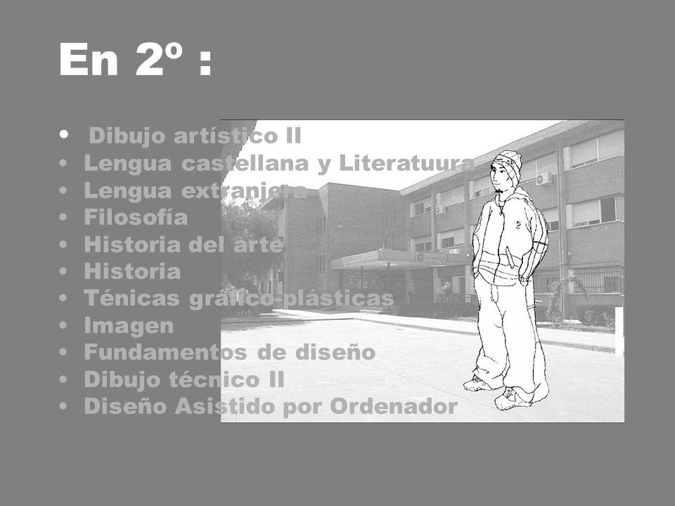 En 2º : Dibujo artístico II Lengua castellana y Literatuura Lengua extranjera Filosofía Historia del arte Historia Ténicas gráfico-plásticas Imagen Fundamentos de diseño Dibujo técnico II Diseño Asistido por Ordenador
