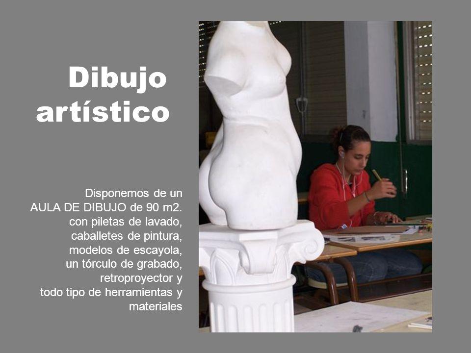 Dibujo artístico Disponemos de un AULA DE DIBUJO de 90 m2.