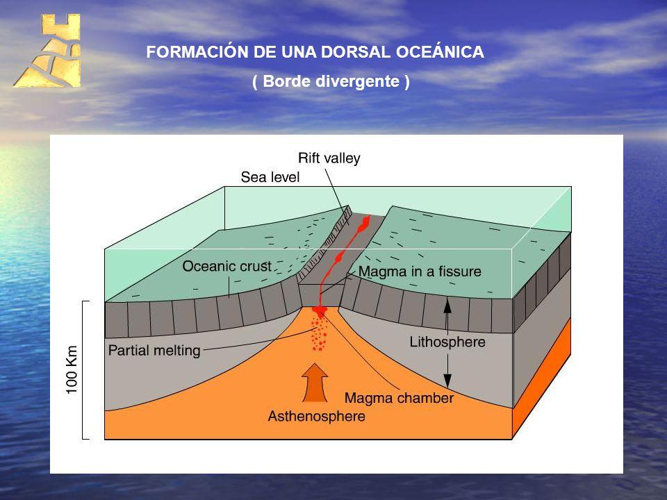 FORMACIÓN DE UNA DORSAL OCEÁNICA ( Borde divergente )