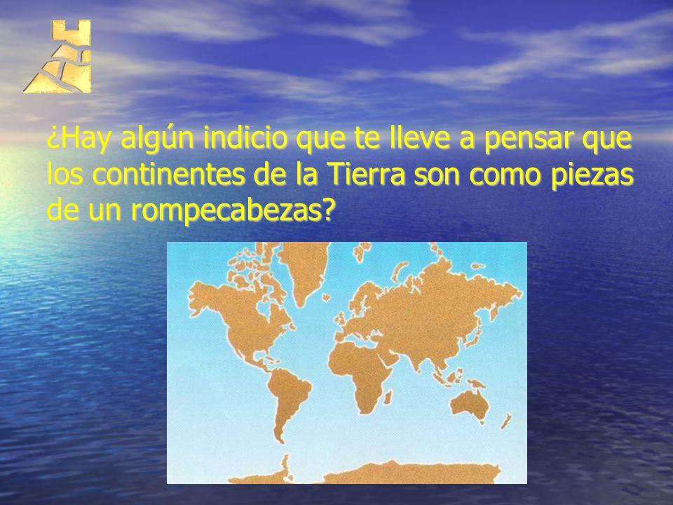 ¿Hay algún indicio que te lleve a pensar que los continentes de la Tierra son como piezas de un rompecabezas?