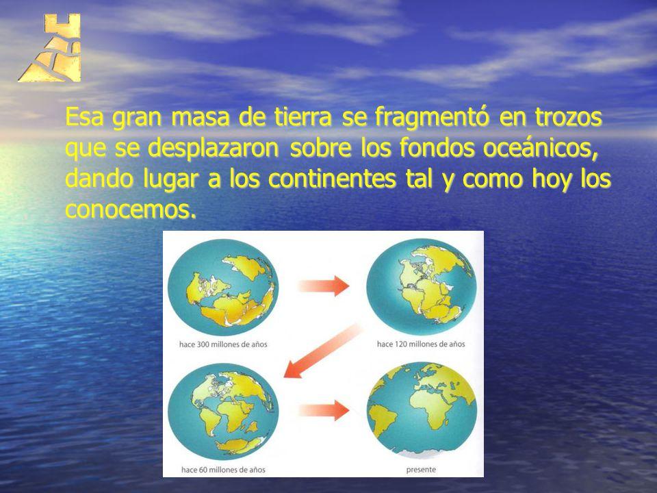 Esa gran masa de tierra se fragmentó en trozos que se desplazaron sobre los fondos oceánicos, dando lugar a los continentes tal y como hoy los conocem