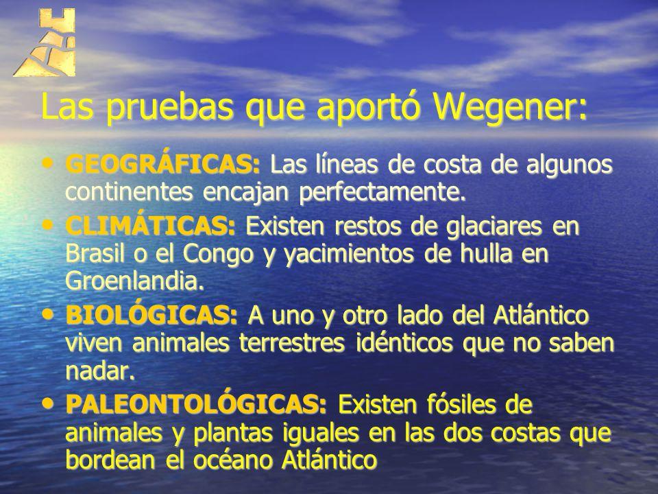 Las pruebas que aportó Wegener: GEOGRÁFICAS: Las líneas de costa de algunos continentes encajan perfectamente. GEOGRÁFICAS: Las líneas de costa de alg