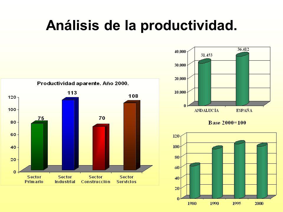Análisis de la productividad.