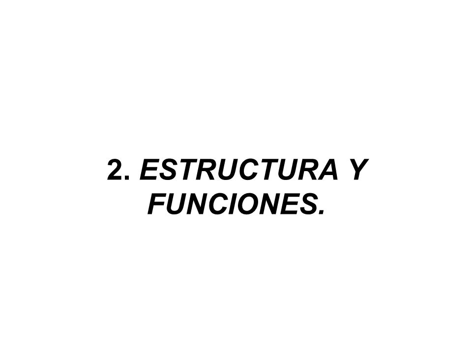 2. ESTRUCTURA Y FUNCIONES.