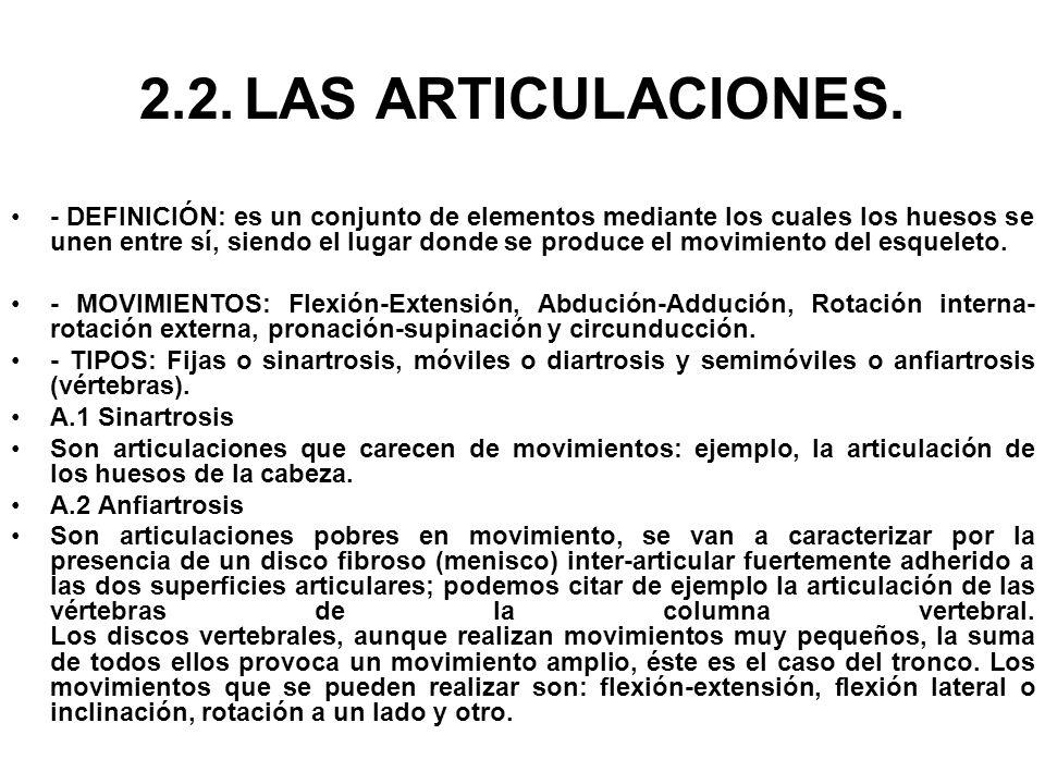 2.2.LAS ARTICULACIONES. - DEFINICIÓN: es un conjunto de elementos mediante los cuales los huesos se unen entre sí, siendo el lugar donde se produce el