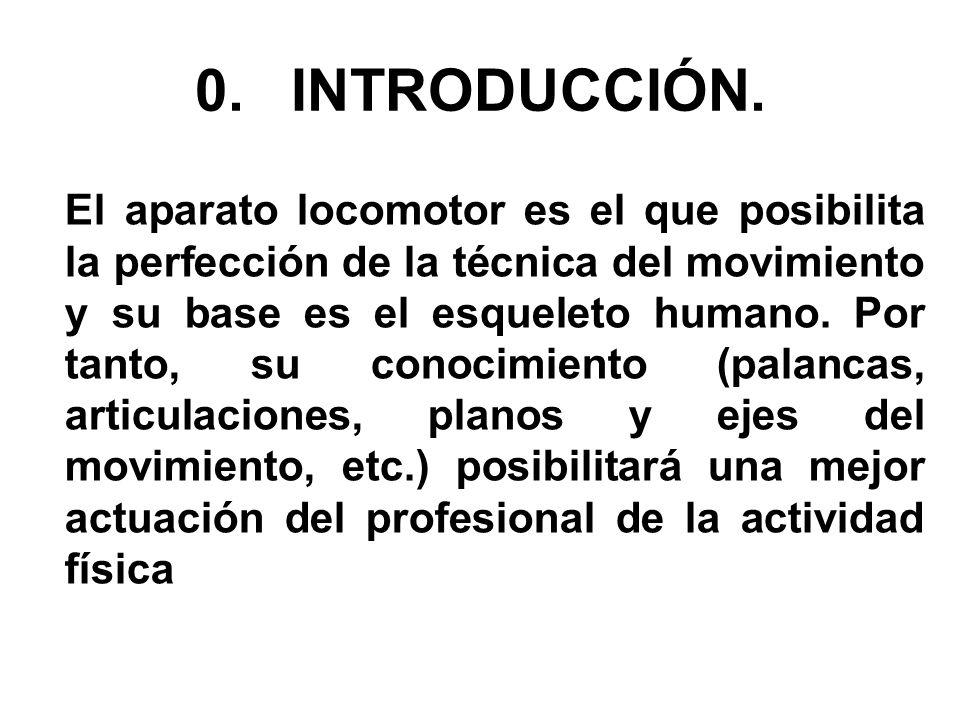 0.INTRODUCCIÓN. El aparato locomotor es el que posibilita la perfección de la técnica del movimiento y su base es el esqueleto humano. Por tanto, su c