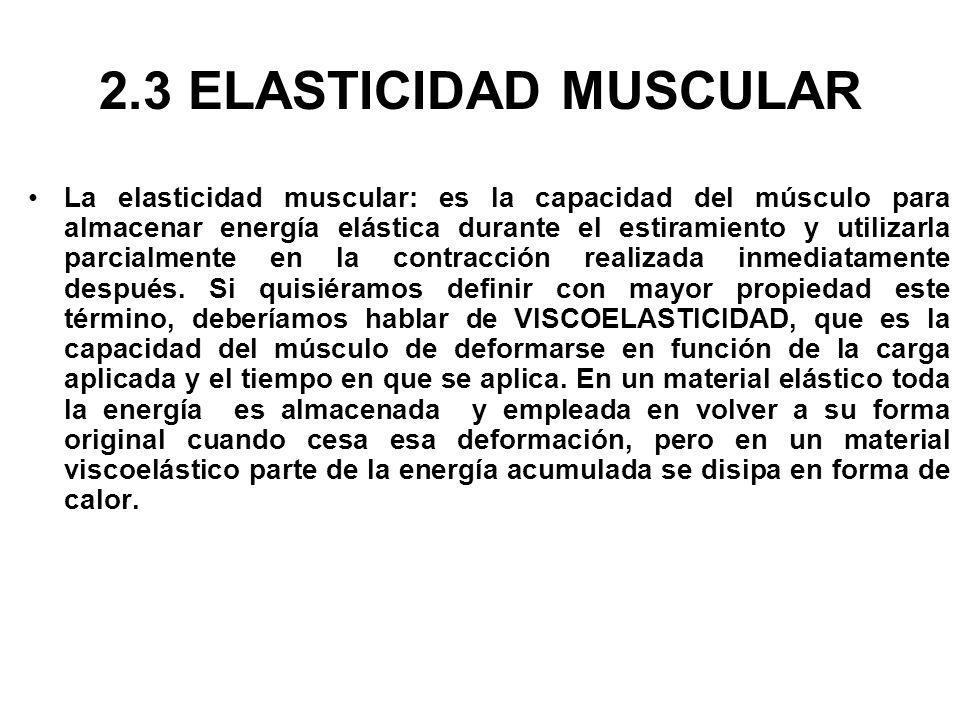 2.3 ELASTICIDAD MUSCULAR La elasticidad muscular: es la capacidad del músculo para almacenar energía elástica durante el estiramiento y utilizarla par