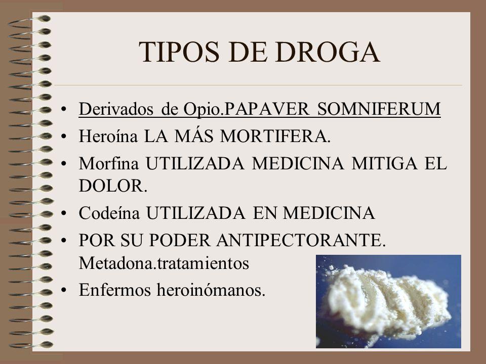 TIPOS DE DROGA Derivados de Opio.PAPAVER SOMNIFERUM Heroína LA MÁS MORTIFERA. Morfina UTILIZADA MEDICINA MITIGA EL DOLOR. Codeína UTILIZADA EN MEDICIN