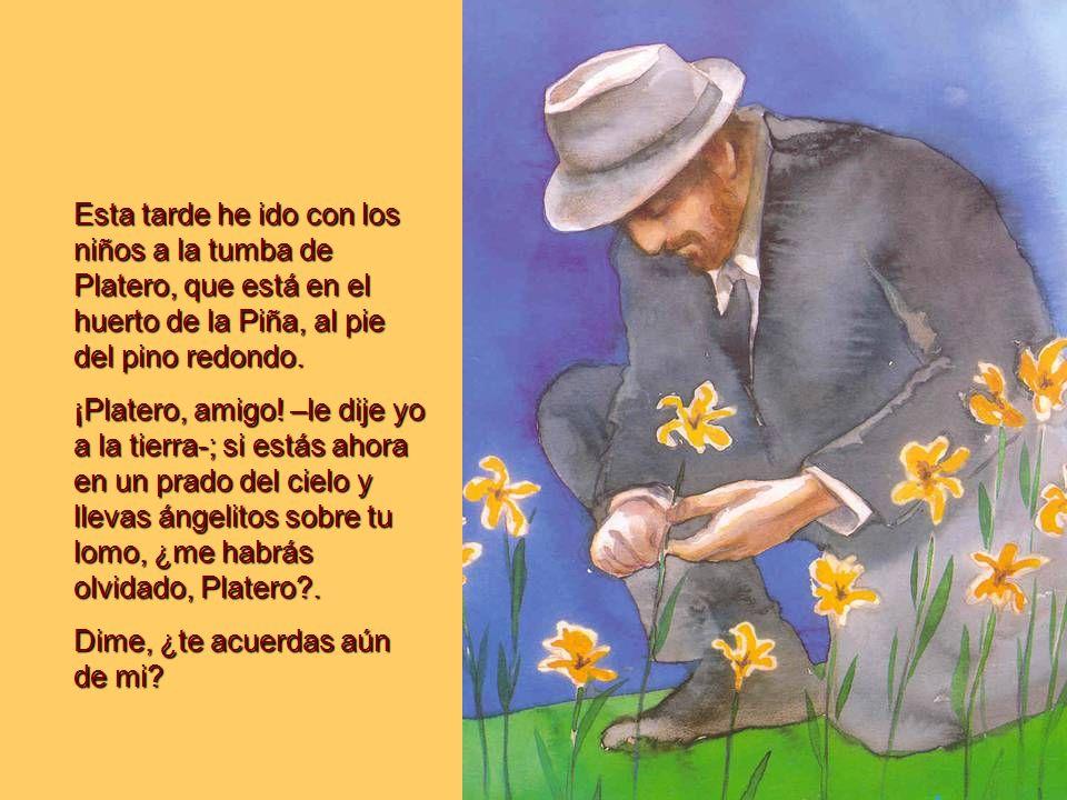A mediodía, Platero estaba muerto… Por la cuadra en silencio revoloteaban mariposas de tres colores…