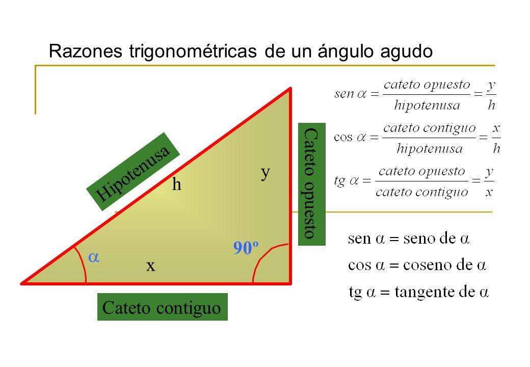90º Cateto contiguo x Cateto opuesto y Hipotenusa h Razones trigonométricas de un ángulo agudo
