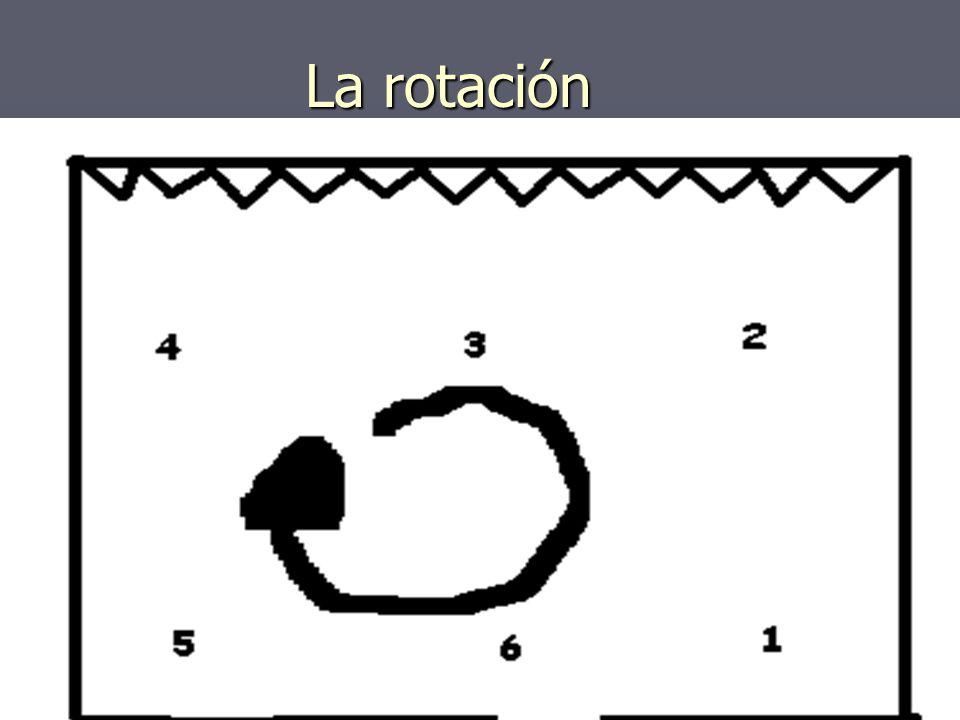 La rotación