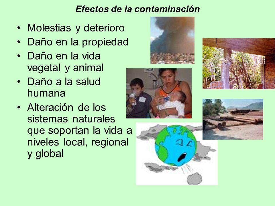 Efectos de la contaminación Molestias y deterioro Daño en la propiedad Daño en la vida vegetal y animal Daño a la salud humana Alteración de los siste