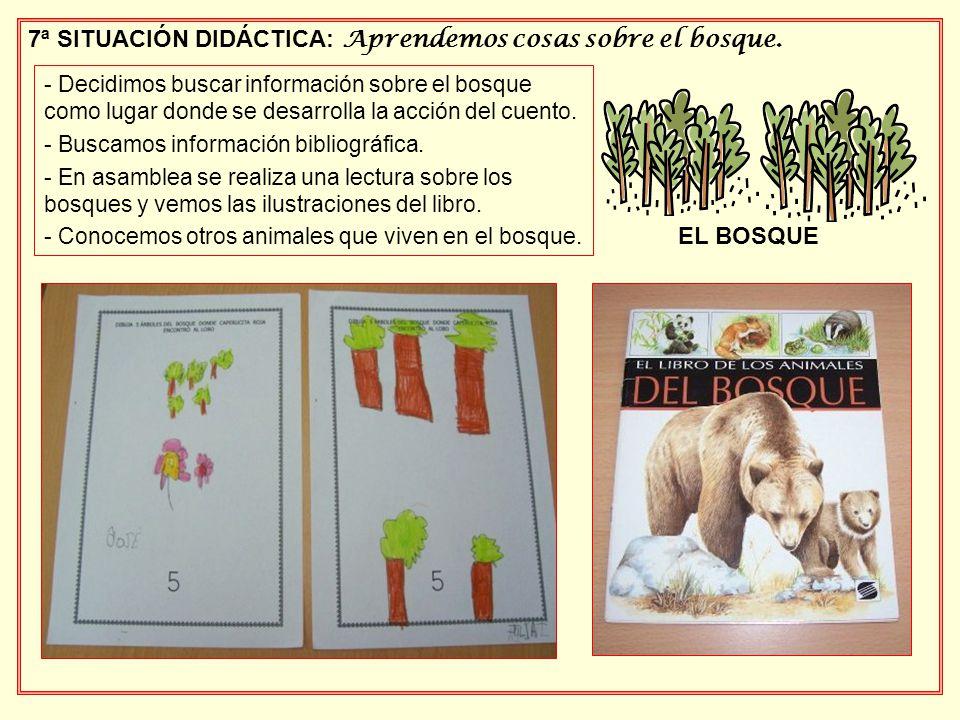 7ª SITUACIÓN DIDÁCTICA: Aprendemos cosas sobre el bosque. - Decidimos buscar información sobre el bosque como lugar donde se desarrolla la acción del