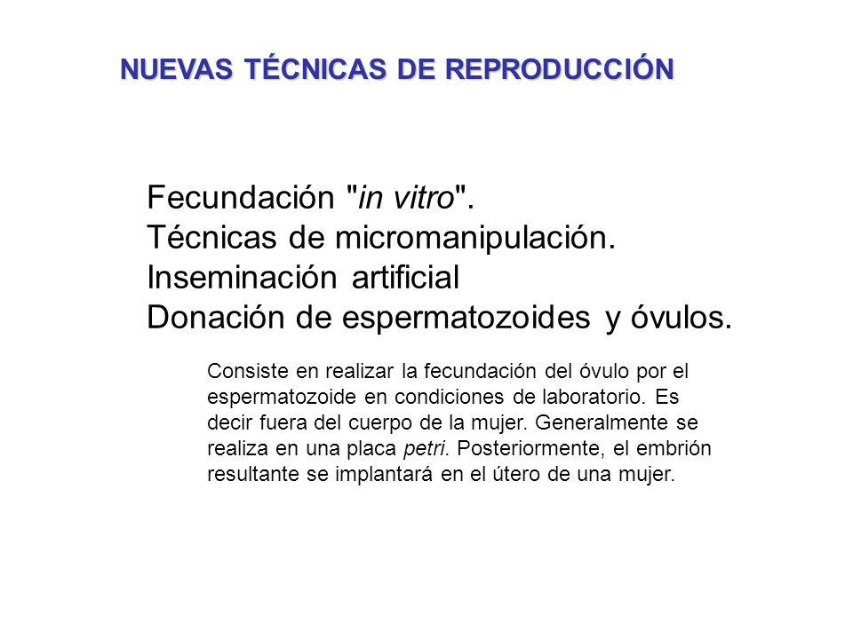 NUEVAS TÉCNICAS DE REPRODUCCIÓN Fecundación in vitro .