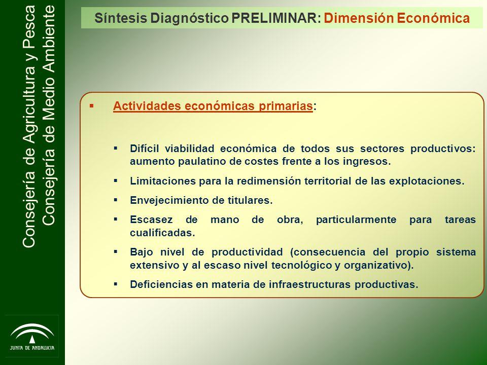 Consejería de Agricultura y Pesca Consejería de Medio Ambiente Síntesis Diagnóstico PRELIMINAR: Dimensión Económica Actividades económicas primarias: