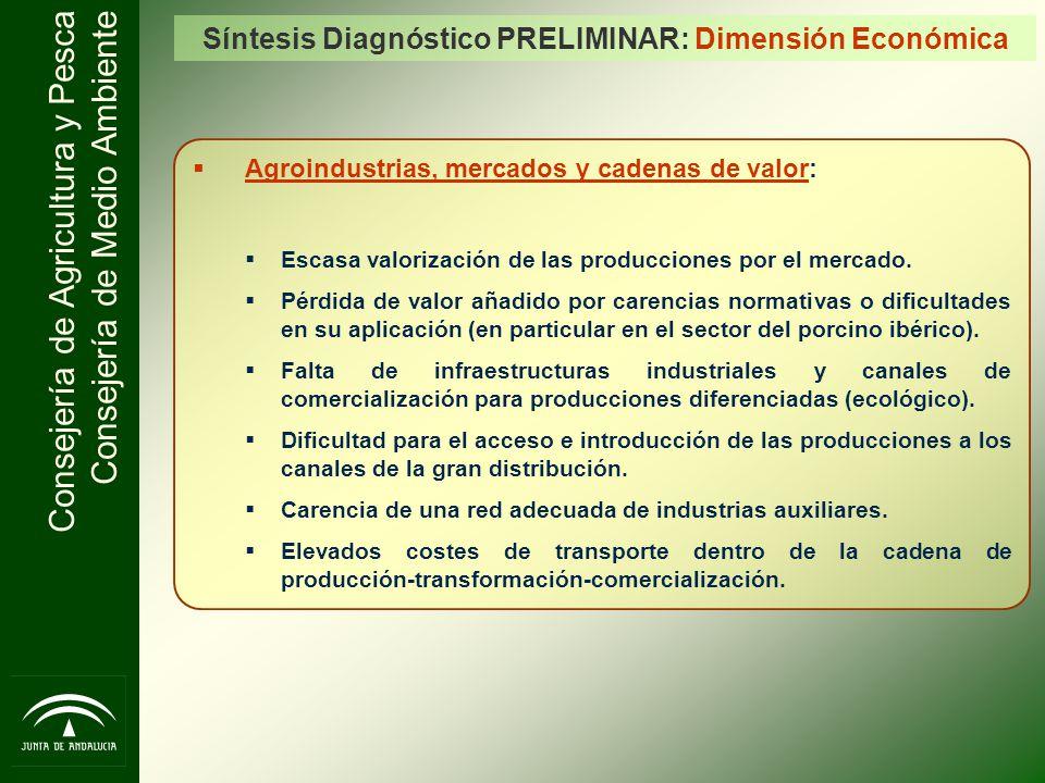Consejería de Agricultura y Pesca Consejería de Medio Ambiente Síntesis Diagnóstico PRELIMINAR: Dimensión Económica Agroindustrias, mercados y cadenas