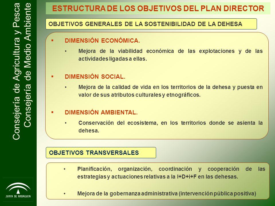 Consejería de Agricultura y Pesca Consejería de Medio Ambiente ESTRUCTURA DE LOS OBJETIVOS DEL PLAN DIRECTOR OBJETIVOS GENERALES DE LA SOSTENIBILIDAD