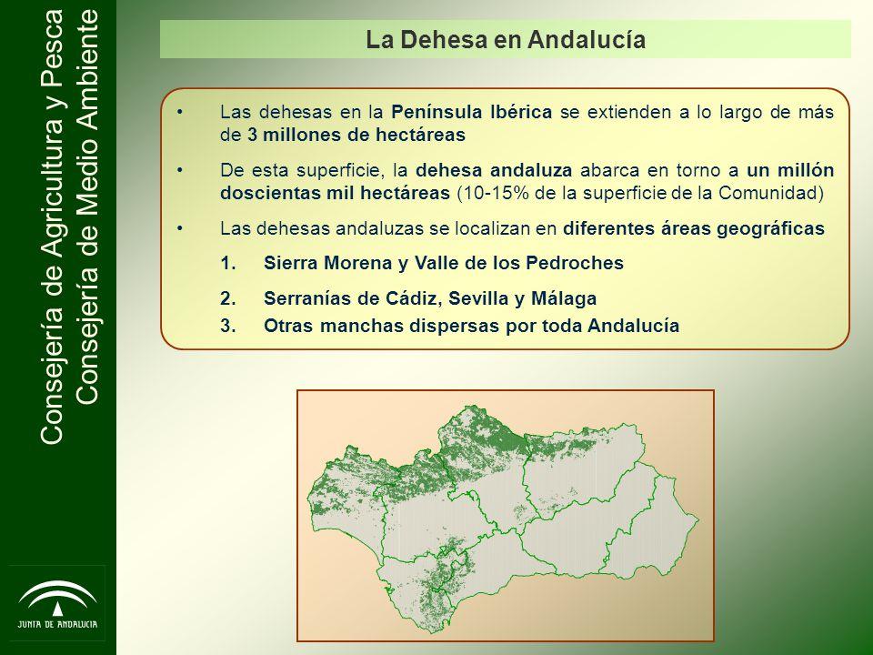 Consejería de Agricultura y Pesca Consejería de Medio Ambiente Las dehesas en la Península Ibérica se extienden a lo largo de más de 3 millones de hec