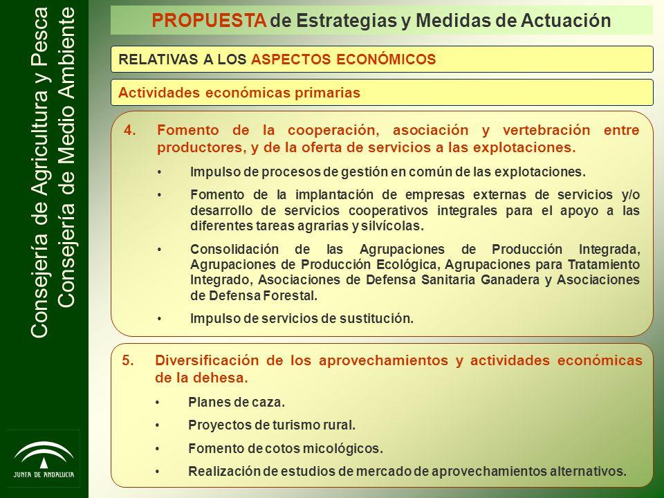 Consejería de Agricultura y Pesca Consejería de Medio Ambiente PROPUESTA de Estrategias y Medidas de Actuación 4.Fomento de la cooperación, asociación