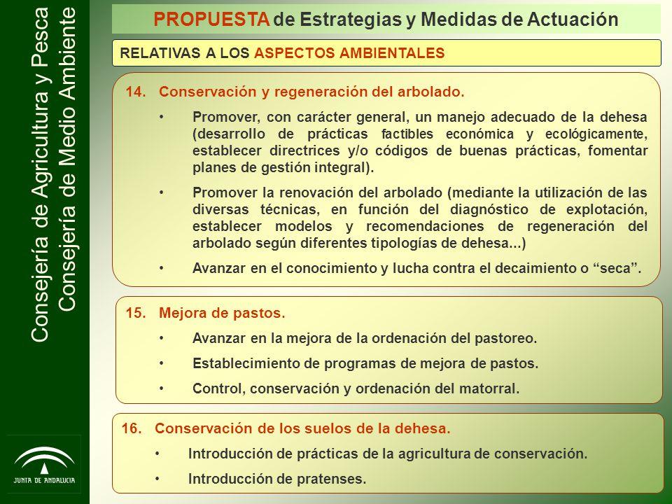 Consejería de Agricultura y Pesca Consejería de Medio Ambiente 14.Conservación y regeneración del arbolado. Promover, con carácter general, un manejo