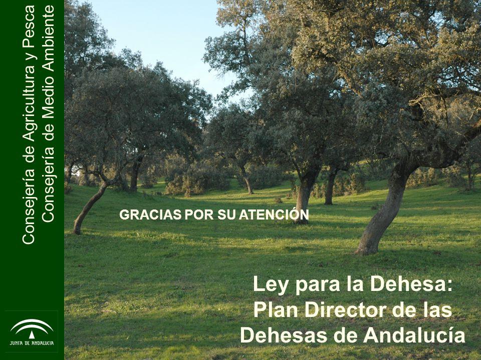 Consejería de Agricultura y Pesca Consejería de Medio Ambiente Ley para la Dehesa: Plan Director de las Dehesas de Andalucía GRACIAS POR SU ATENCIÓN