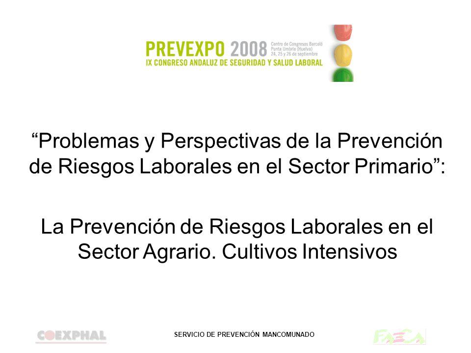 SERVICIO DE PREVENCIÓN MANCOMUNADO Problemas y Perspectivas de la Prevención de Riesgos Laborales en el Sector Primario: La Prevención de Riesgos Labo