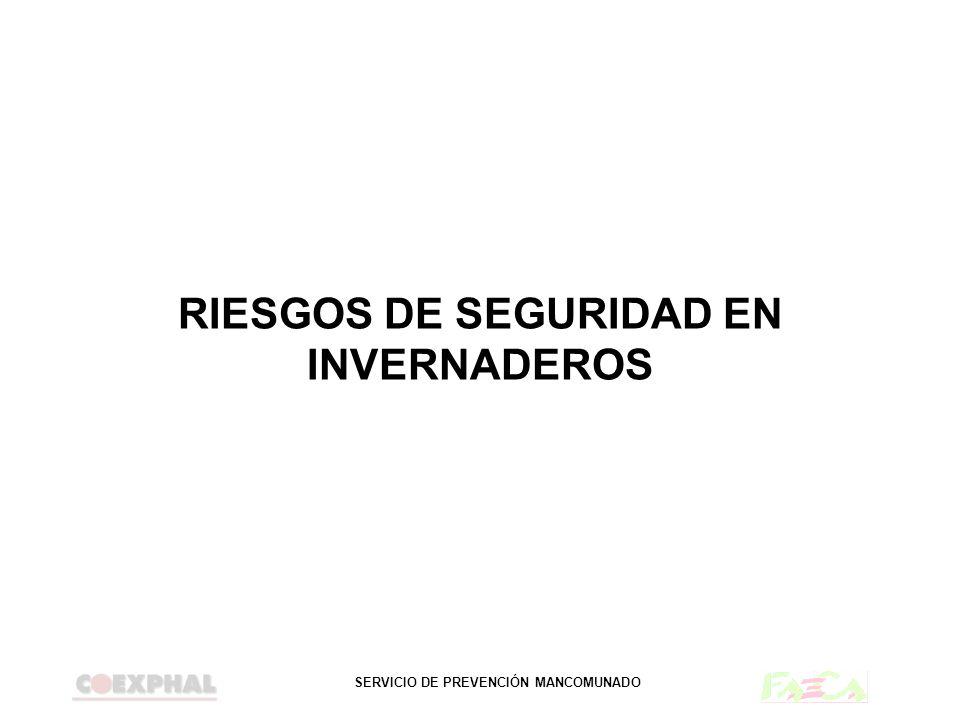 SERVICIO DE PREVENCIÓN MANCOMUNADO RIESGOS DE SEGURIDAD EN INVERNADEROS
