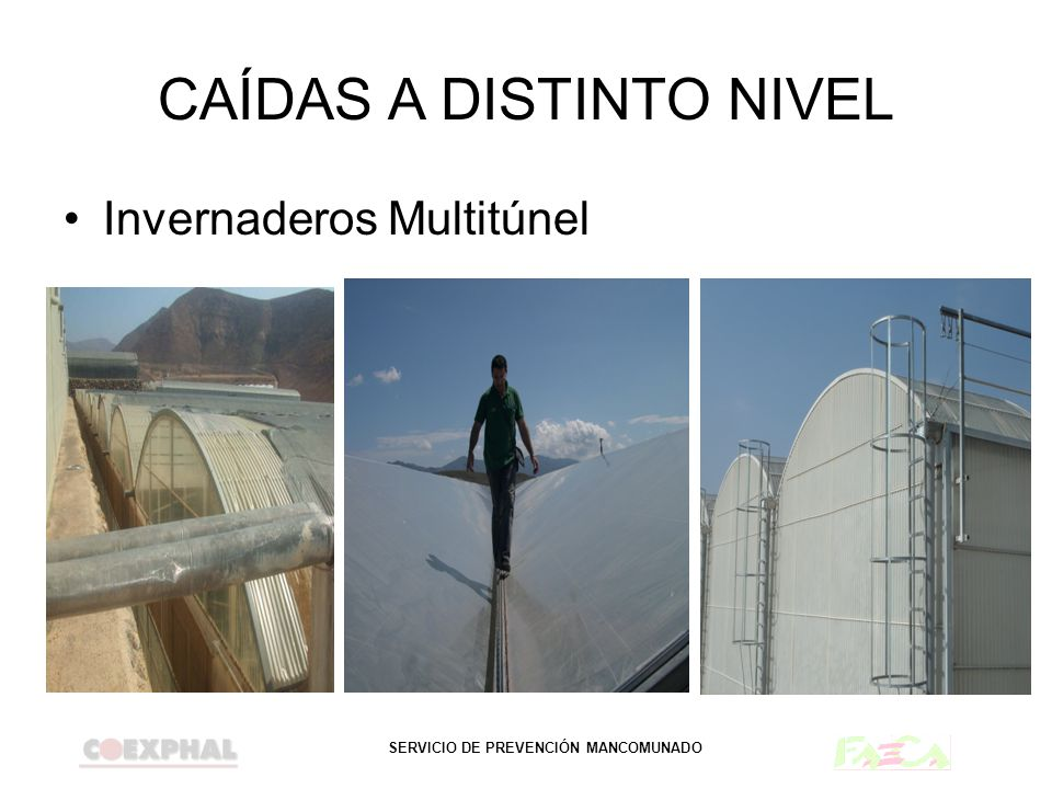 SERVICIO DE PREVENCIÓN MANCOMUNADO CAÍDAS A DISTINTO NIVEL Invernaderos Multitúnel