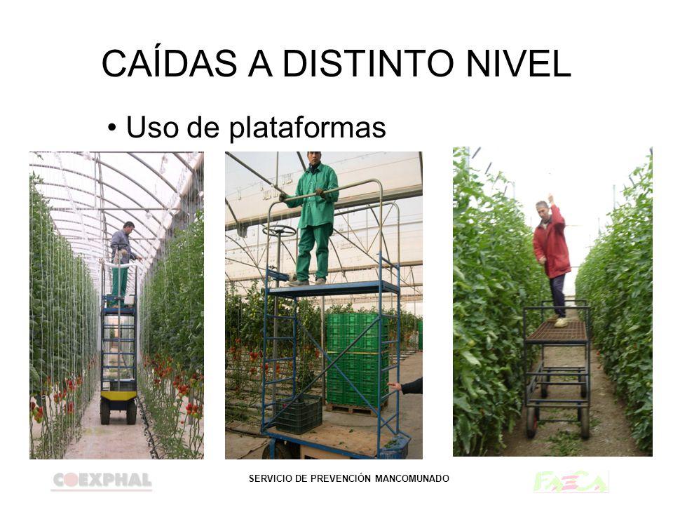 SERVICIO DE PREVENCIÓN MANCOMUNADO CAÍDAS A DISTINTO NIVEL Uso de plataformas